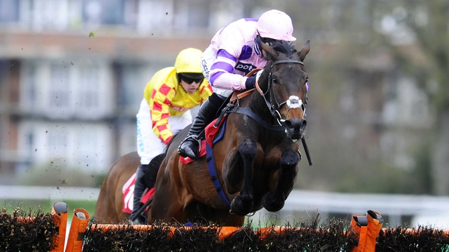 Ptit Zig could feature at Newcastle on 30 Novem
