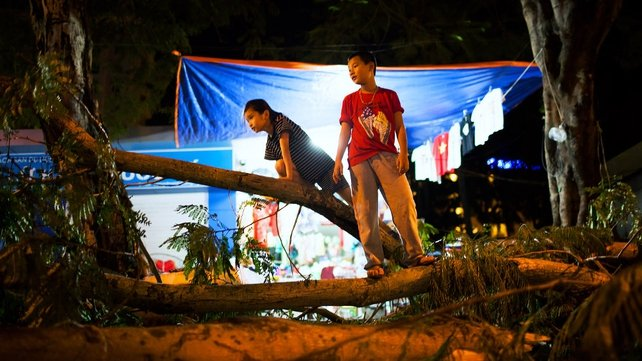 Children stand on fallen tree branches after Typhoon Haiyan made landfall in Halong City, Vietnam