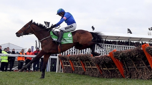 Hurricane Fly has claimed 17 Grade One victories