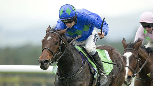 Hurricane Fly made a workmanlike return to action when capturing the  Morgiana Hurdle at Punchestown last month