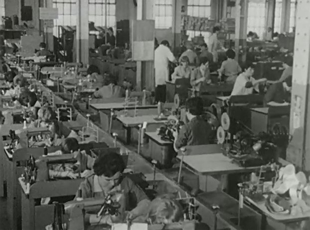 Women in the Work Place (1968)