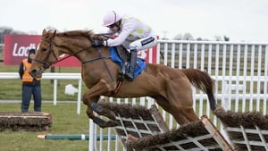 Annie Power could step up to three miles in the Christmas Hurdle