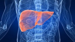 Professor Aiden McCormack said a decrease in liver disease is not yet apparent