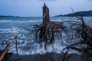 Japan After the Wave (Daniel Berehulak, Australia, Getty Images)