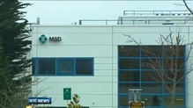 Almost 600 jobs under threat at pharmaceutical company in Dublin