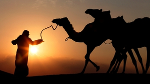 A tribesman leads camels through the sand dunes of the Liwa desert, 220km west of Abu Dhabi