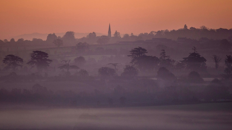 Mist lingers around trees on the Somerset Levels near Glastonbury