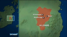 Appeal for witnesses to Kildare crash
