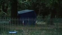 Man held over Dublin park death