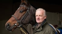 Willie Mullins believes there will be fantastic racing on view at the Leopardstown festival.