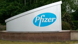 150 jobs to go at Pfizer's Newbridge facility (Pic: Photocall/Eamonn Farrell)