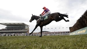 The return of the all-conquering Sprinter Sacre will have to wait