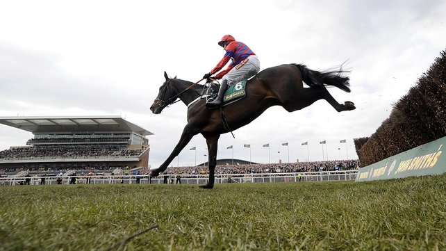 Sprinter Sacre to miss Tingle Creek