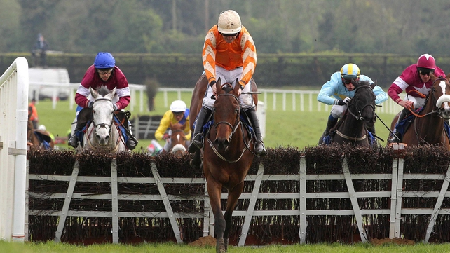 Twinlight on the way to winning at Fairyhouse in 2011