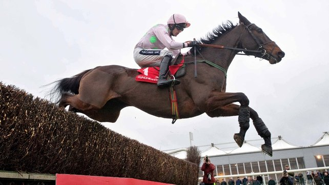 Arvika Ligeonniere is the big draw at Punchestown