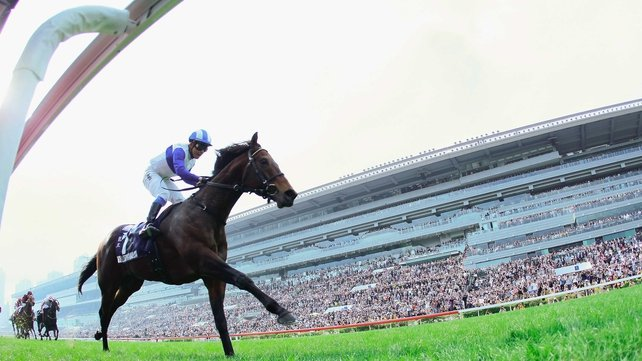 Lord Kanaloa made an indelible on the huge crowd that turned out at Sha Tin