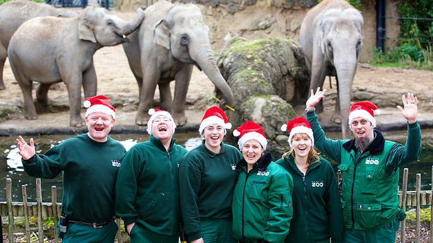 Zookeepers Gerry Creighton, James Creighton, Aisleen Greene, Lise Jorgensen, Aisling Kennelly and Garth de Jong - RTÉ One, 7.15pm