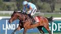 Un De Sceaux remains unbeaten after Thurles win