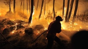 Firemen are silhouetted against the flames as they fight a forest fire at Moimenta da Beira in Portugal