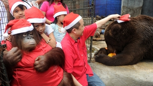 Zoo owner Manny Tangco places a Santa hat on a brown bear named 'Justin BieBear' as young children hug an orangutan named Pacquiao at the Malabon Zoo, suburban Manila