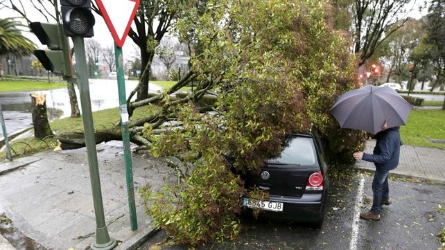 A tree toppled onto a car following a heavy storm in Santiago de Compostela, northwestern Spain