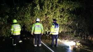 Gardaí and Fire crew deal with a downed tree between Freshford and Urlingford, Co Kilkenny (pic: @GardaTraffic)
