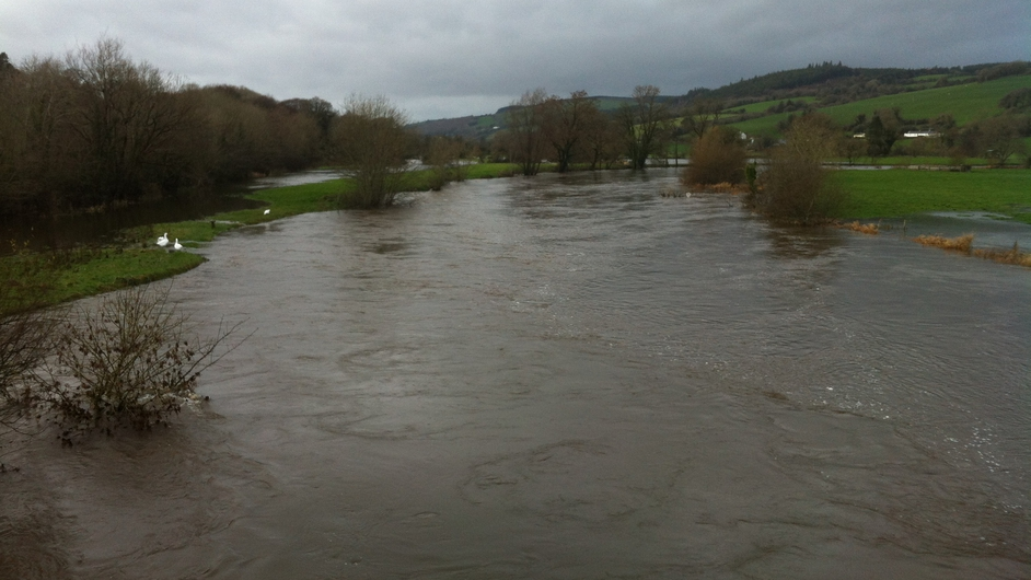 The River Blackwater in Ballyduff, Co Waterford (Pic: Paul Murphy)