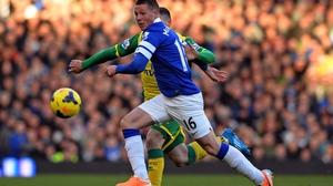 James McCarthy joined Everton from Wigan for €13m in 2013