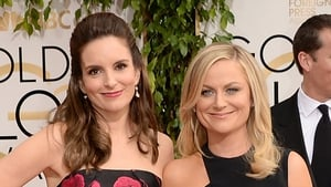 Tina Fey (seen here with Amy Poehler) is writer-producing a new US sitcom