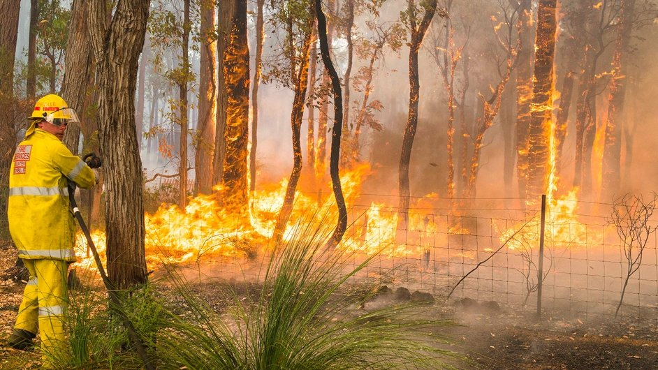 The blaze is thought to have been started by a fallen power line in the city's wooded fringes