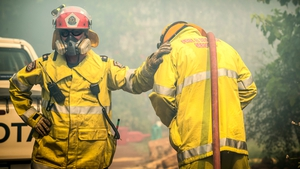 Strong winds complicated efforts as the battle continued into Monday night, with 275 firefighters working to douse flames that had already burnt through 650 hectares