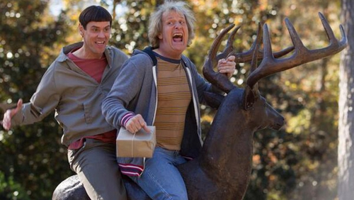 Jim Carrey and Jeff Daniels are back  as Harry and Lloyd in Dumb And Dumber To