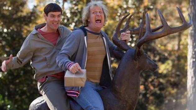 Dumb and Dumber To is due for release in Ireland this December