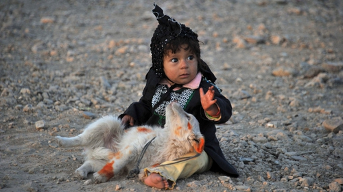 An internally displaced Afghan girl plays with a dog outside their shelter on the outskirts of Jalalabad