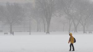 A tourist walks along the National Mall in Washington, DC
