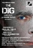 Theatre - The Dig