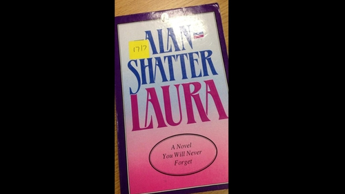Niall Collins mentioned a complaint about Alan Shatter's novel Laura during the debate