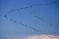 V Formation Flying