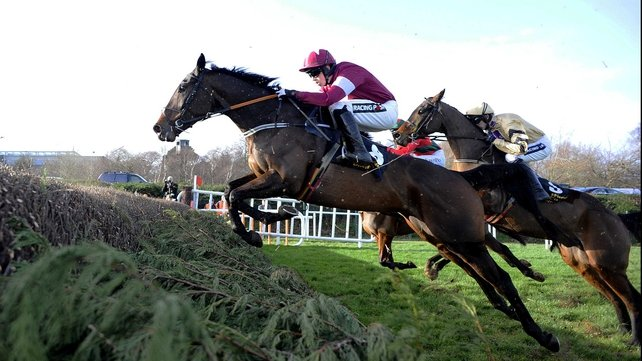 Trifolium is a best-price 10-1 to win the Arkle at the Cheltenham Festival after his Leopardstown success