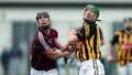 Cody: Shefflin 'hungry for hurling'