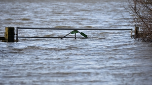 A submerged farm gate in Muchelney