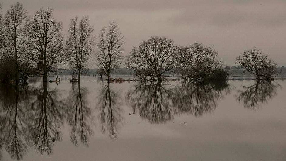 Trees reflected in flood waters on the Somerset Levels near Langport