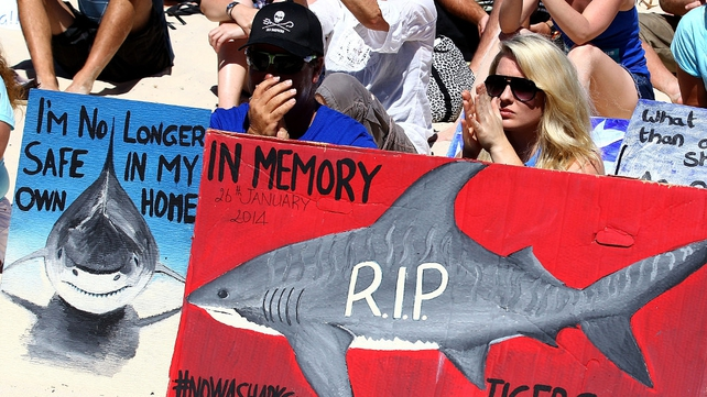 Protesters show their support during a shark-culling policy protest at Cottesloe Beach in Perth