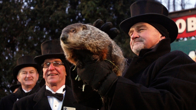 Members of the Groundhog Club Inner Circle look on as co-handler John Griffiths (C) lifts Phil from his burrow