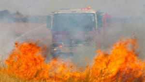 Officials said the fires were the worst in five years