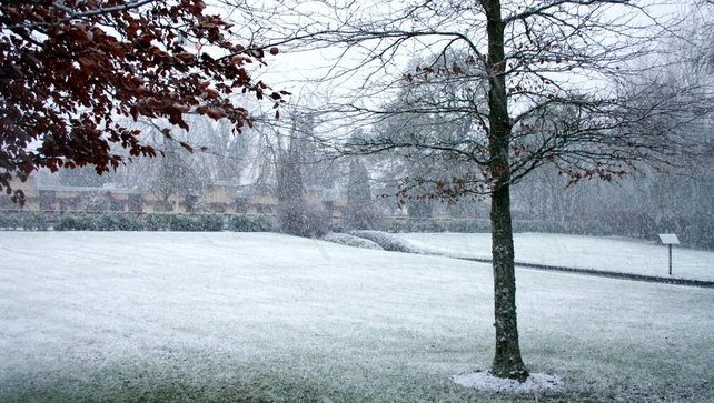 A dusting of snow at the Irish National Stud, Co Kildare