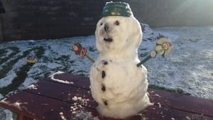 Just enough to make a snowman in Castlebellingham, Co Louth (Pic: Justin Madden)