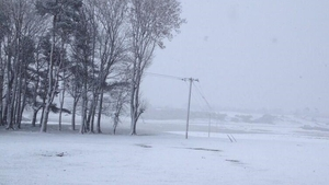 Conditions in the Curragh, Co Kildare (Pic: Willie Hannon)