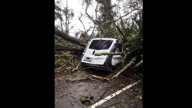 There were no injuries after a tree fell on this van on the Knockalisheen Road in Limerick City (Pic: Andrew Carey)