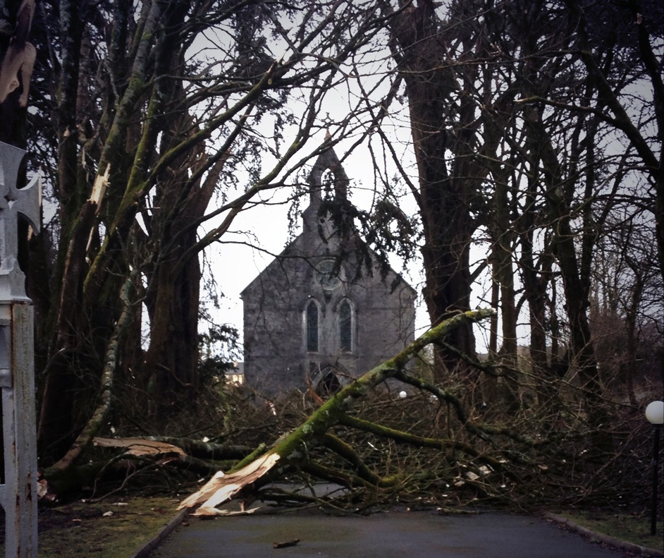 Damage at Monagea, Co Limerick (Pic: Catherina O'Callaghan)